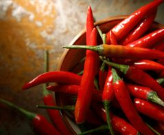Hot Pepperoncini from Calabria