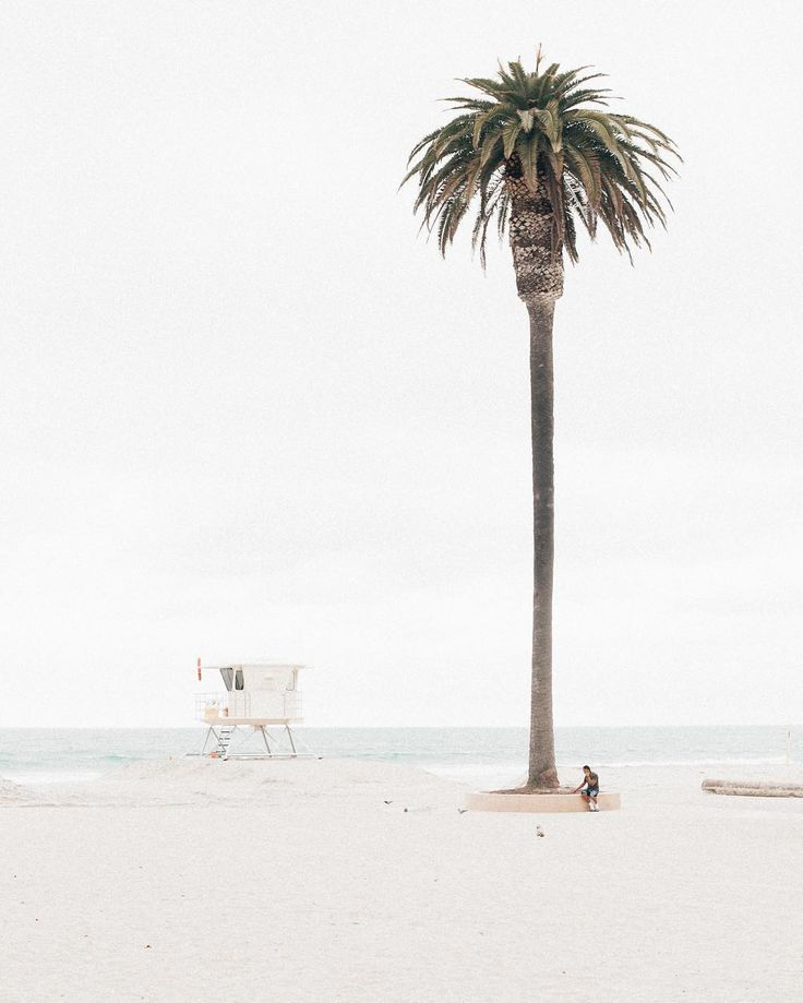 Summer awaits For Maternity Inspiration, Shop here >> http://www.seraphine.com/us | Palm trees | Beach vibes | Summer inspiration | Sun |
