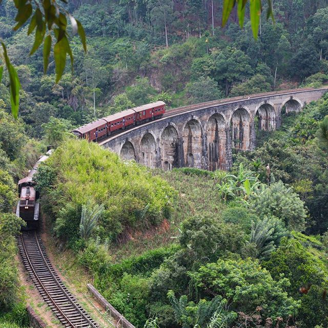 """""""Nine #Arch #bridge, #Ella #Demodara. Waiting for the old #train which pass at 3.30 PM. . . . .  #photo #photography  #culture #people #exploring #igtravel #travelgram #architecture #design #documentaryphotography #nature #photojournalism #reporting #canon #storytelling #travel #everydayasia #adventure #travelphoto #reportagespotlight #travelsrilanka #ecoturism"""" by @frau_fraus. #fslc #followshoutoutlikecomment #TagsForLikesFSLC #TagsForLikesApp #follow #shoutout #followme #comment…"""