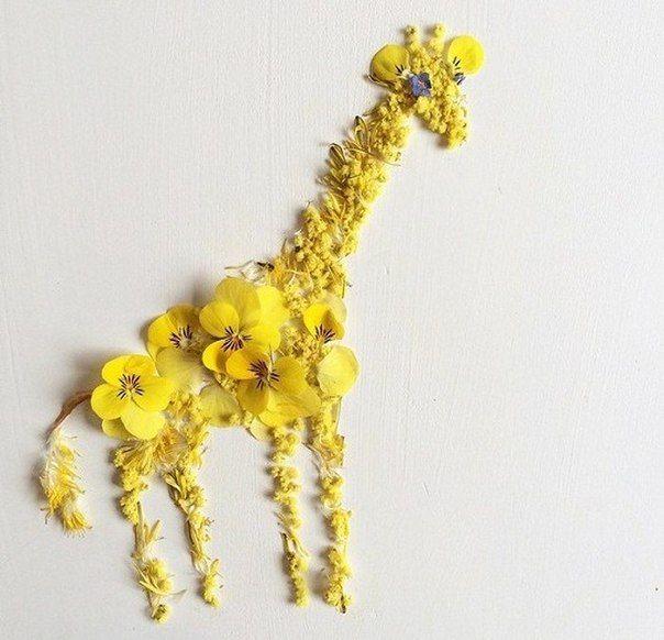 Художница Бриджит Бет Коллинз создает из цветов яркие и оригинальные коллажи и изображением животных. / Удивительное искусство