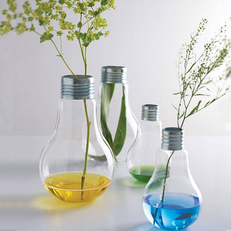 17 Best Images About Lightbulb Vases On Pinterest