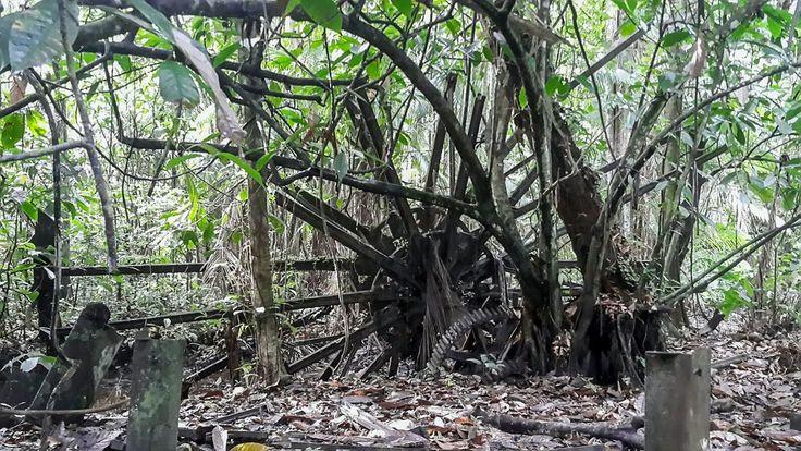 Een oud gietijzeren waterrad in de jungle van Suriname.  Foto Nina Jurna. NRC