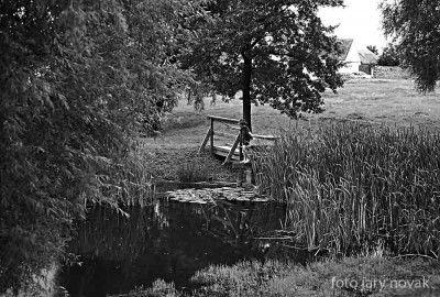 Havraníky a malý rybář u místního rybníčka.