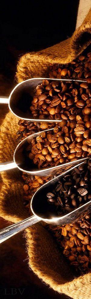 #youneedcaffeveloce #coffee #beans