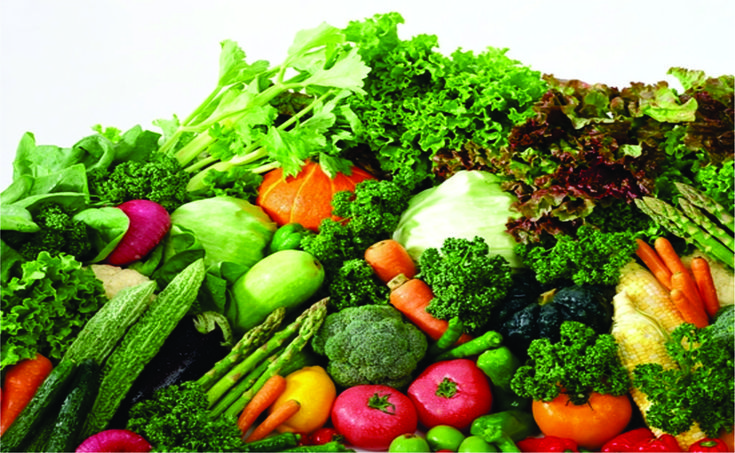 Rau quả có vai trò đặc biệt quan trọng trong dinh dưỡng bữa ăn. Giá trị chính của rau quả là cung cấp cho cơ thể nhiều muối khoáng, các vitamin, chất pectin và axit hữu cơ. Nhu cầu của con người về vitamin C, carotene chủ yếu do rau quả cung cấp. Ngoài ra trong rau quả còn có loại đường tan trong nước và xenluloza.