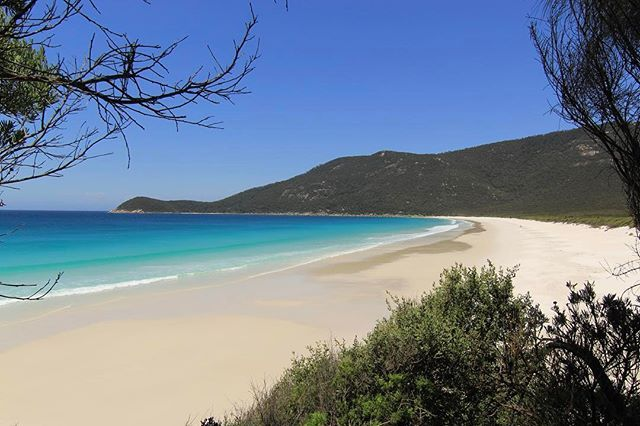 ⠀ ⠀ ::: WATERLOO BAY :::⠀ ⠀ Hello sun soaked beaches, and crystal clear water. The journey from Little Waterloo Bay to the Lighthouse follows this magical stretch of cream coloured sand. Take a dip. Or two. Or three...⠀ ⠀ ⠀ #WilsonsProm #TheProm #VisitWilsonsProm #WaterlooBay #TheLighthouse #Mountains #Beaches #WhiteSand #Swimming #Ocean #CrystalClearWater #DeepBlueSea #Paradise #Bliss #Hiking #HikersGuide #Trekking #Tramping #BushWalking #Camping #OvernightHike #Adventure #Explore…