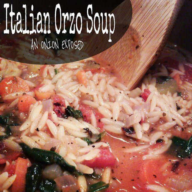 Italian Orzo Soup {An Onion Exposed}