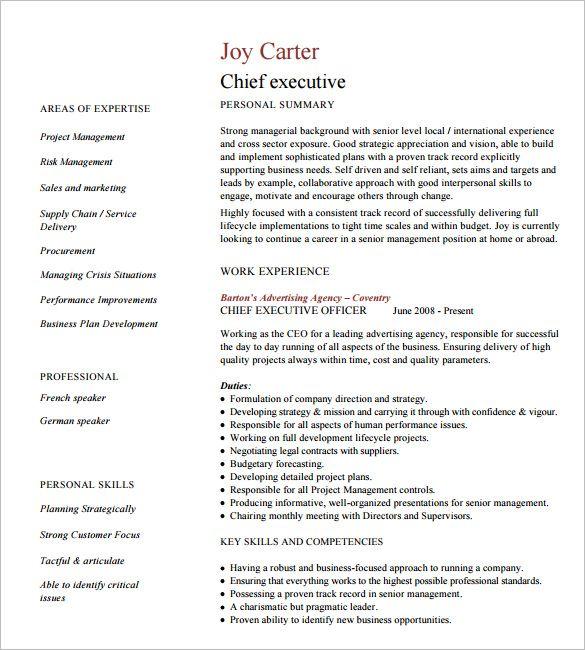 As 25 melhores ideias de Executive resume template no Pinterest - senior executive resume