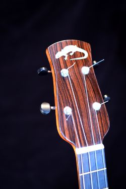Baritone ukulele peg head with inlay of a newt in mother of pearl.