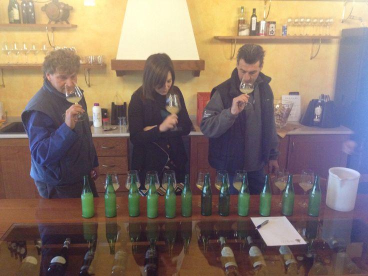 Tessari brothers tasting 2014 vintage