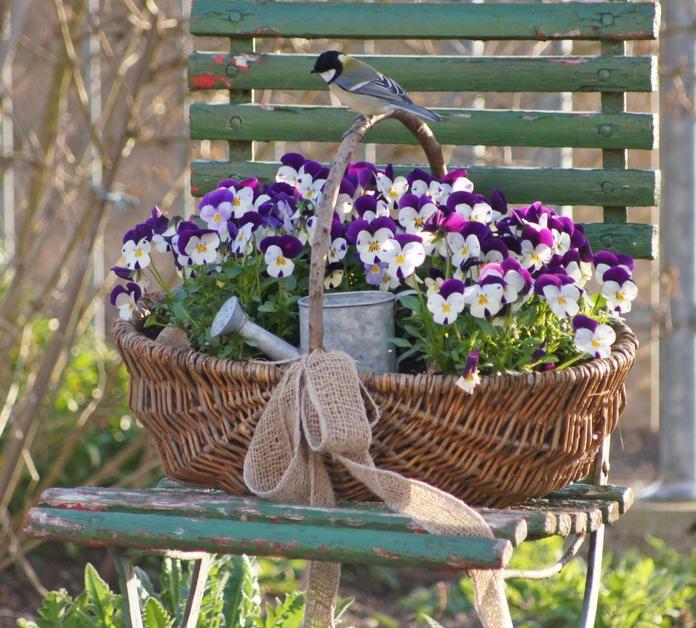 deko ideen shabby chic f r den garten garten deko pinterest flowers flowers perennials. Black Bedroom Furniture Sets. Home Design Ideas
