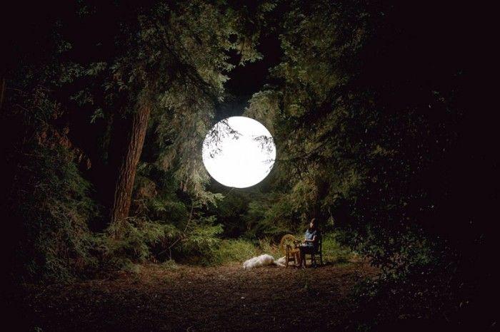 moon in the treesBelly Moon, Mothers, Beautiful Moon, Aimless Beautiful, Trees, Michael Moon, Luna Moon, Beautiful Outdoor, Photography