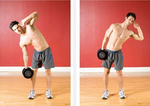 Obliques Exercises The Dumbbell Side-Bend...