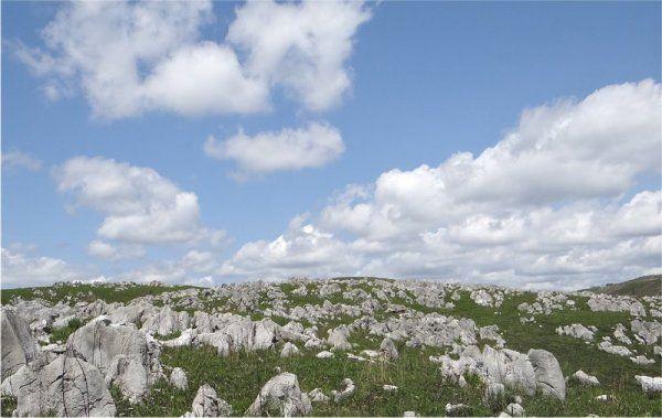 秋吉台、秋芳洞を訪ねたら「是非!」足を延ばして訪ねたい!コバルトブルーに輝く別府弁天池とは? | ギャザリー