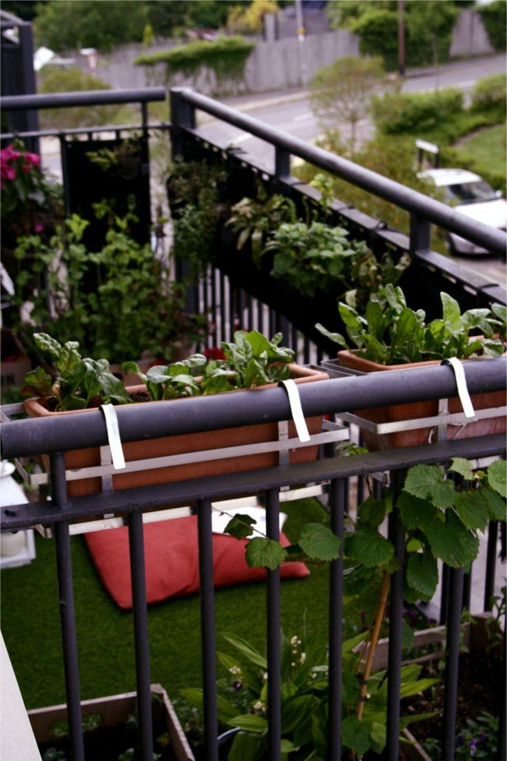 101 best balcony gardens images on Pinterest | Balcony gardening ...