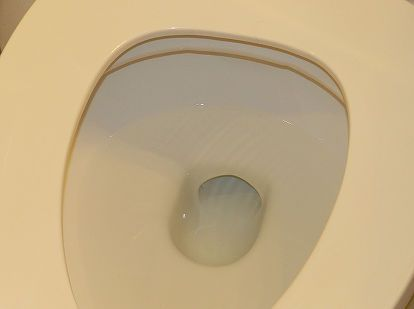 how to clean that stubborn toilet bowl ring for 25 cents, cleaning tips, go green, This is the AFTER picture