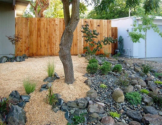 183 best tucson landscape ideas images on pinterest for Landscaping rocks tucson