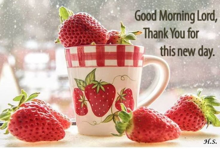 Good Morning Lord morning good morning morning quotes good morning quotes morning quote good morning quote