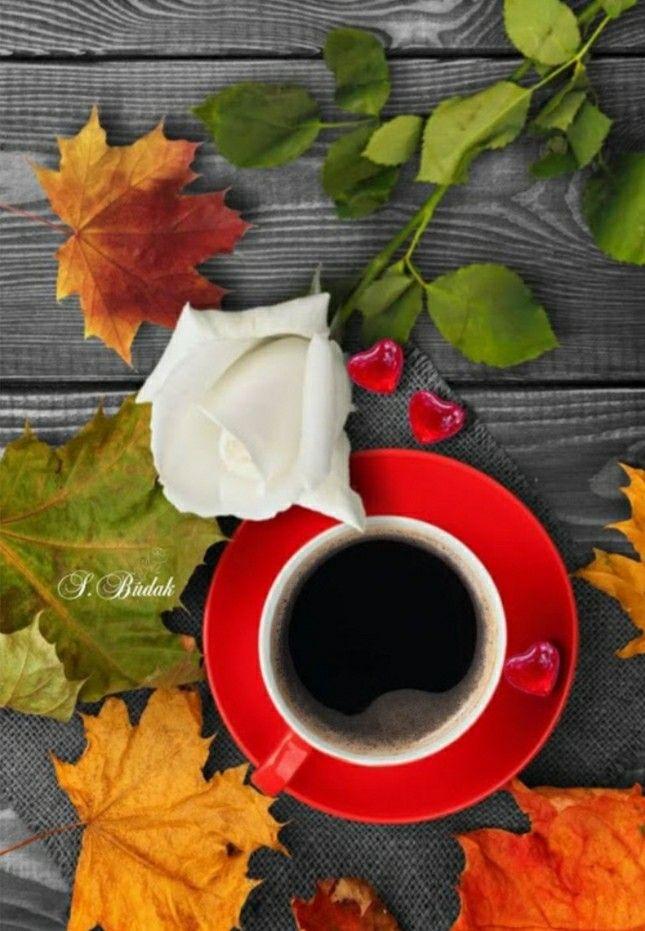 снимке картинки осенний кофе для двоих это наводит