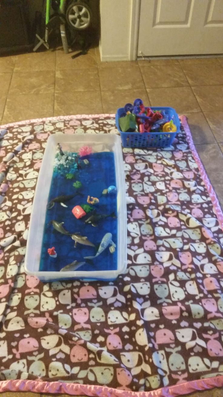 Ocean sensory bin. Girls loved playing with their ocean toys in the dyed blue water. The under the bed storage tote is so affordable and versatile for sensory bins! #affiliate #affiliatelink #ocean #sensory #sensorybin #sensoryactivities #sensoryplay #whales #sharks #homeschool #homeschooling #play #kids