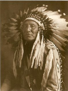 Blackfoot Chief                                                       …