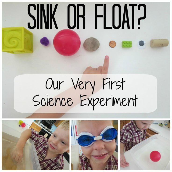 Sink or Float: Our very first preschool science experiment. Simple and fun for young kids!