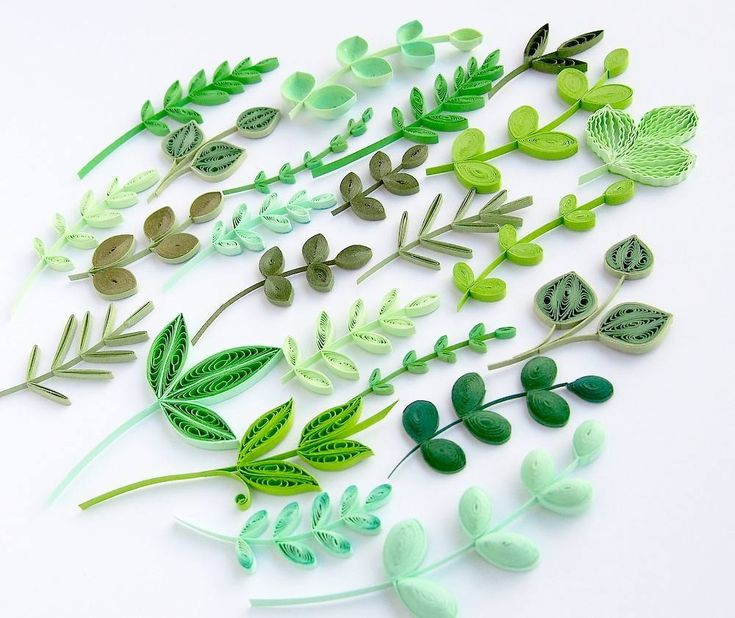 Green addiction  .  #quilling #green  #papercraft #hobby #crafting #paperflorals #paperflower #florals #paperartist #paperwork #quilled #paperquilling #filigrana #paperfiligree #rękodzieło #polskierękodzieło #papierowecuda #квіллінг #квиллинг #종이감기공예 #종이감기 #paperart