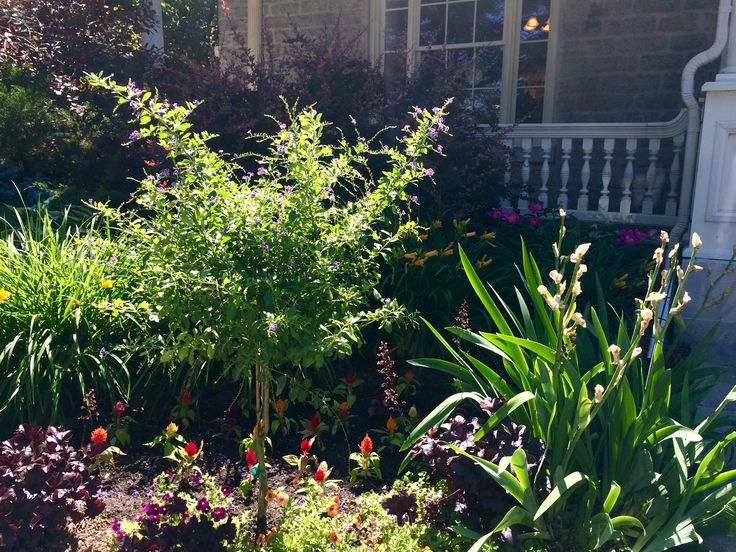 The SPA Day Retreat, July 2015
