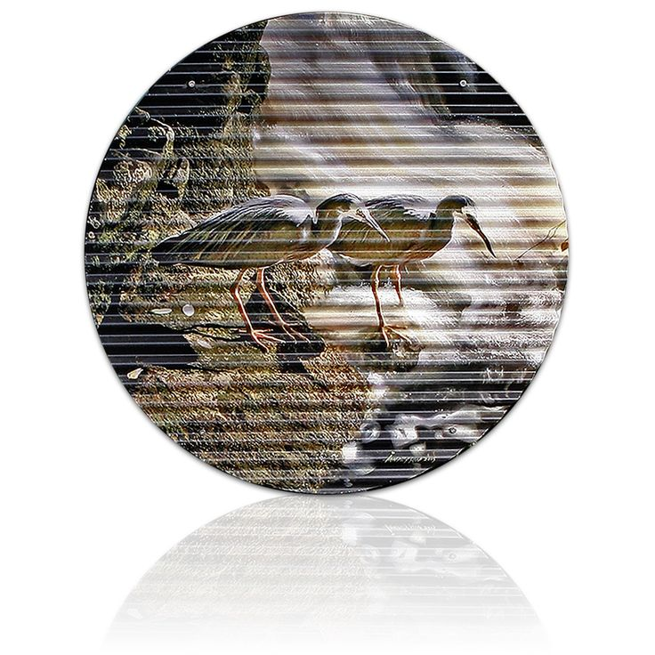 PATIENCE WILL BE REWARDED – Herons with a lesson or two - Ian Anderson Fine Art http://ianandersonfineart.com