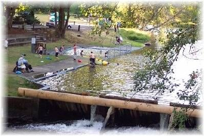 Dewey pool in hawkins park vernonia oregon one of my favorite places favorite places for Public swimming pools portland or