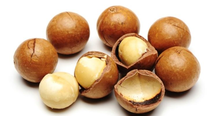 Macadamia nuts contain vitamin E, a powerful antioxidant that protects the cells from the damaging effects of free radicals. Vitamin E also helps heal wounds, delayed premature wrinkling of skin and may reduce your risk of cancer and heart disease.