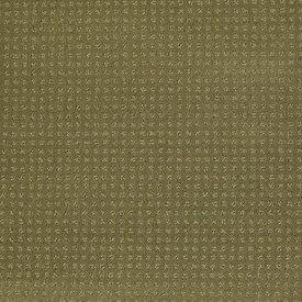 Color: 00300 Aloe In Savannah - EA024 Shaw ANSO Nylon Carpet Georgia Carpet Industries
