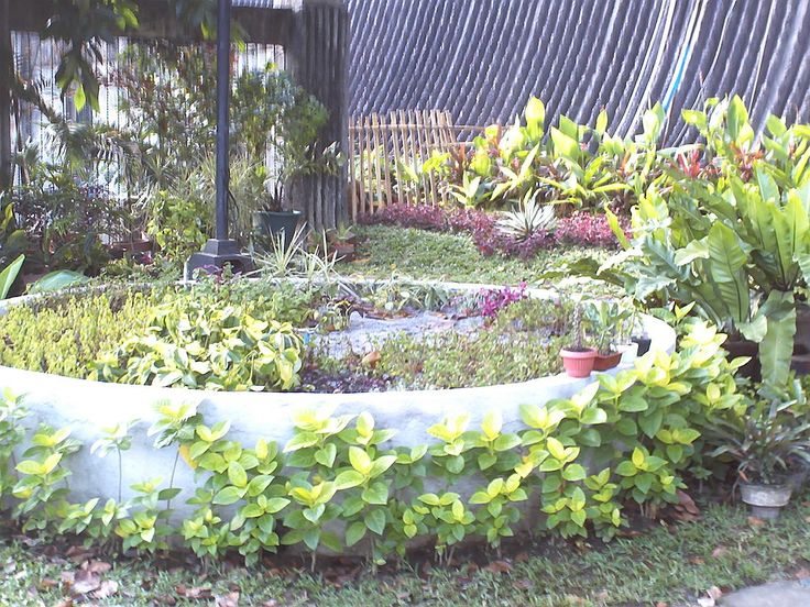 Propagation pit for the ornamental plants using sand and gravel | Hometalk