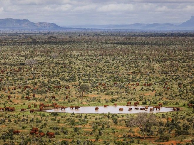 Tsavo East National Park, Kenya | 1,000,000 Places