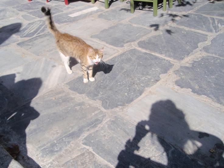 Chora, Andros Island, Greece, 10.2011
