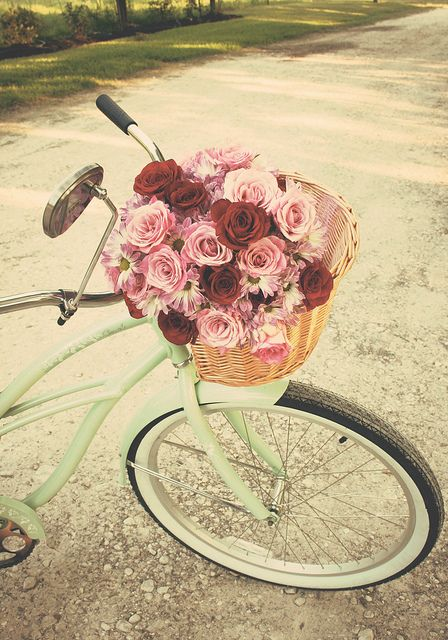 """Life is like riding a bicycle... in order to keep your balance, you must keep moving."" ~ Albert Einstein #vintage #bike #wedding #roses #basket #shabby #chic #red #pink #aqua #mint #green #outdoors #bicycle"