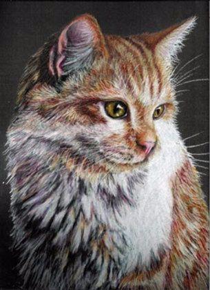 Dit is een originele tekening van een prachtige oranje en witte kat gedaan met Prismacolor gekleurde potlood op zwart papier voor archiveringsdoeleinden Stonehenge en besproeid met UV beschermende fixeerspray.  Ik gebruikte veel verschillende kleuren en vele lagen om dit realistische schilderkunstige beeld.  Het is ongeveer 12 x 15. Houd ind dat sommige kleuren en donkere tinten u ziet enigszins als gevolg van het fotografisch proces en individuele monitoren variëren kunnen. Gelieve te zien…