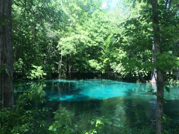 Ginnie Springs in High Springs, FL