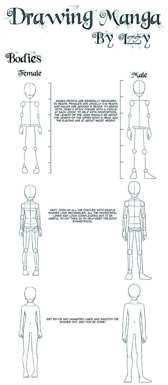 Drawing Bodies Anime Drawing Tips Drawing Tutorial Drawing Lessons