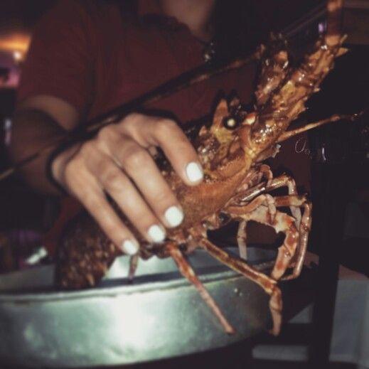 Lobster-Restautant Aquaria Albufeira Portugal