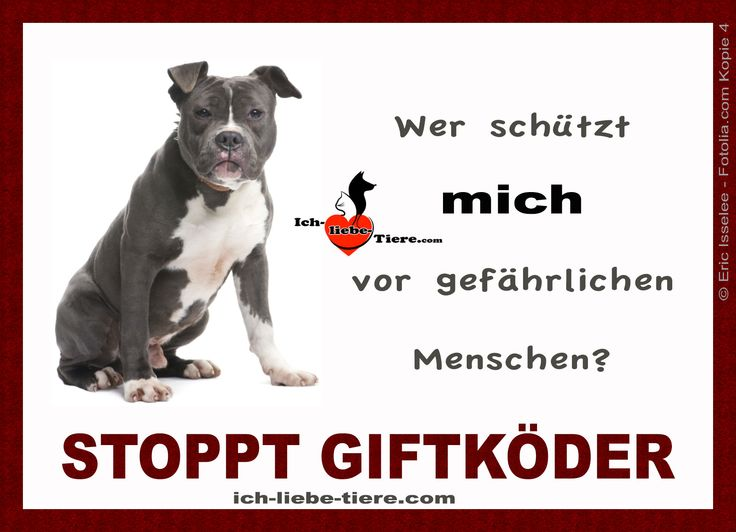 Wer schützt mich vor gefährlichen Menschen? Stoppt Giftköder! >> http://www.ich-liebe-tiere.com/ <<