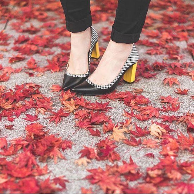 #Autumn mood , #MadeBySarenza  SARENZA - Pretty in Paint #3  #Sarenza #shoes #fw15 #stiletto #chic #retro #houndstooth #PiedDePoule #regram @PaulineFashionBlog