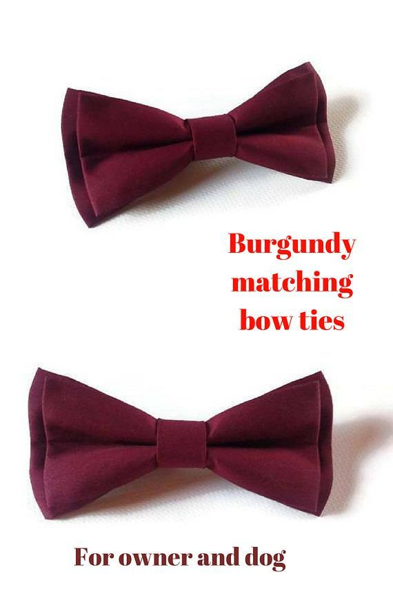 Best 25+ Bow tie groom ideas on Pinterest | Bow tie collar ...