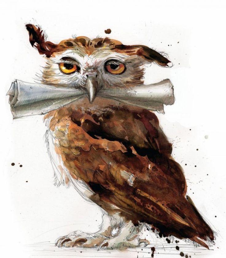 Le premier tome des aventures de Harry Potter réédité dans une superbe version illustrée | Buzzly