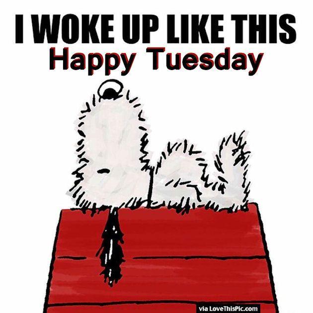 I Woke Up Like This Happy Tuesday good morning tuesday tuesday quotes good morning quotes happy tuesday tuesday quote happy tuesday quotes good morning tuesday snoopy tuesday quotes
