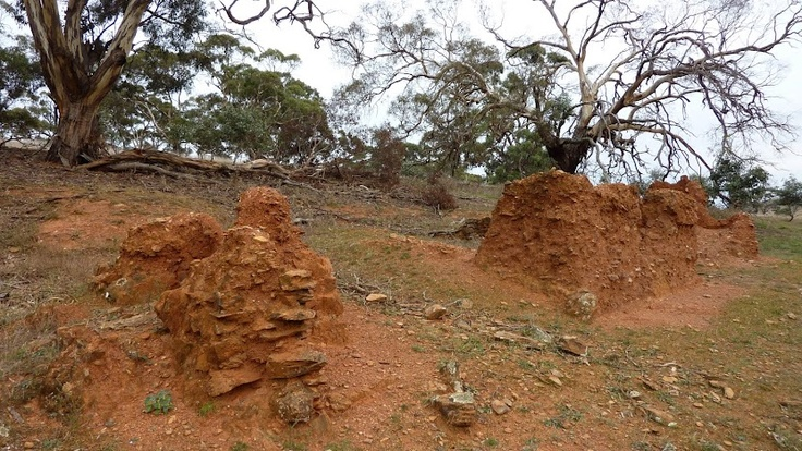 Old mud hut, south of Huppatz Hut, Southern Guidebook map 5.9