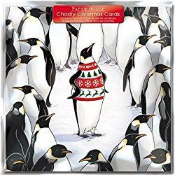 Charity Christmas Cards - Penguin In A Jumper - Cards - Sold In Support Of British Heart Foundation, Age UK, Tenovus, MNDA, NSPCC And Diabetes UK by The Great British Card Company