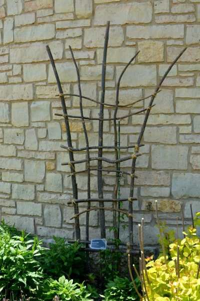 DIY Yard Project: Make a Trellis From Tree Branches. birdsandblooms.com