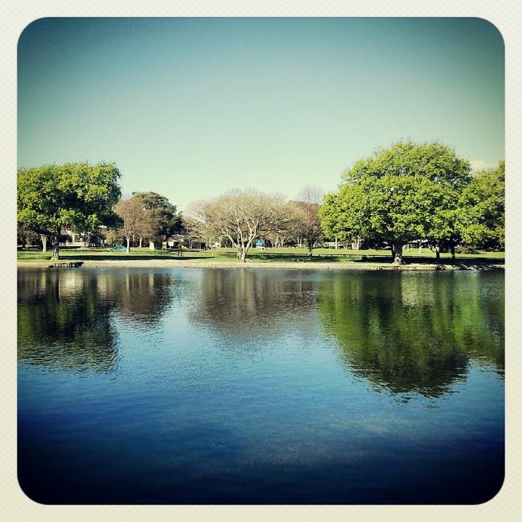 Hokowhitu Palmerston North, New Zealand #Photography