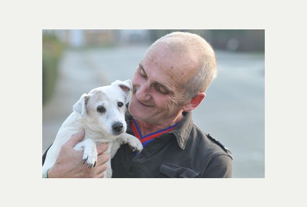 """23-year-old Jack Russell terrier in Lincoln could be world's OLDEST dog! (Hope for our almost 15 year old """"Jack""""!) !!!!! (Very interesting story, too)"""
